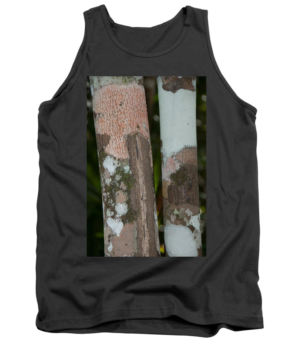 Mexico Quintana Roo Tank Top featuring the digital art Lichen On The Trees At The Coba Ruins by Carol Ailles