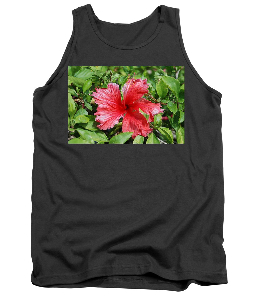 Red Tank Top featuring the photograph RED by Rob Hans