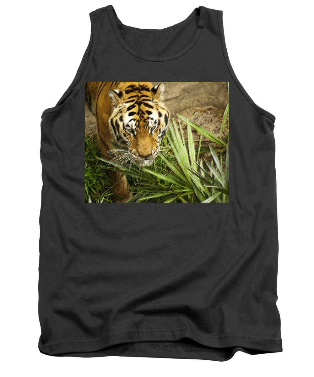 Bengal Tiger Tank Top featuring the photograph Stalking Tiger by Carolyn Marshall