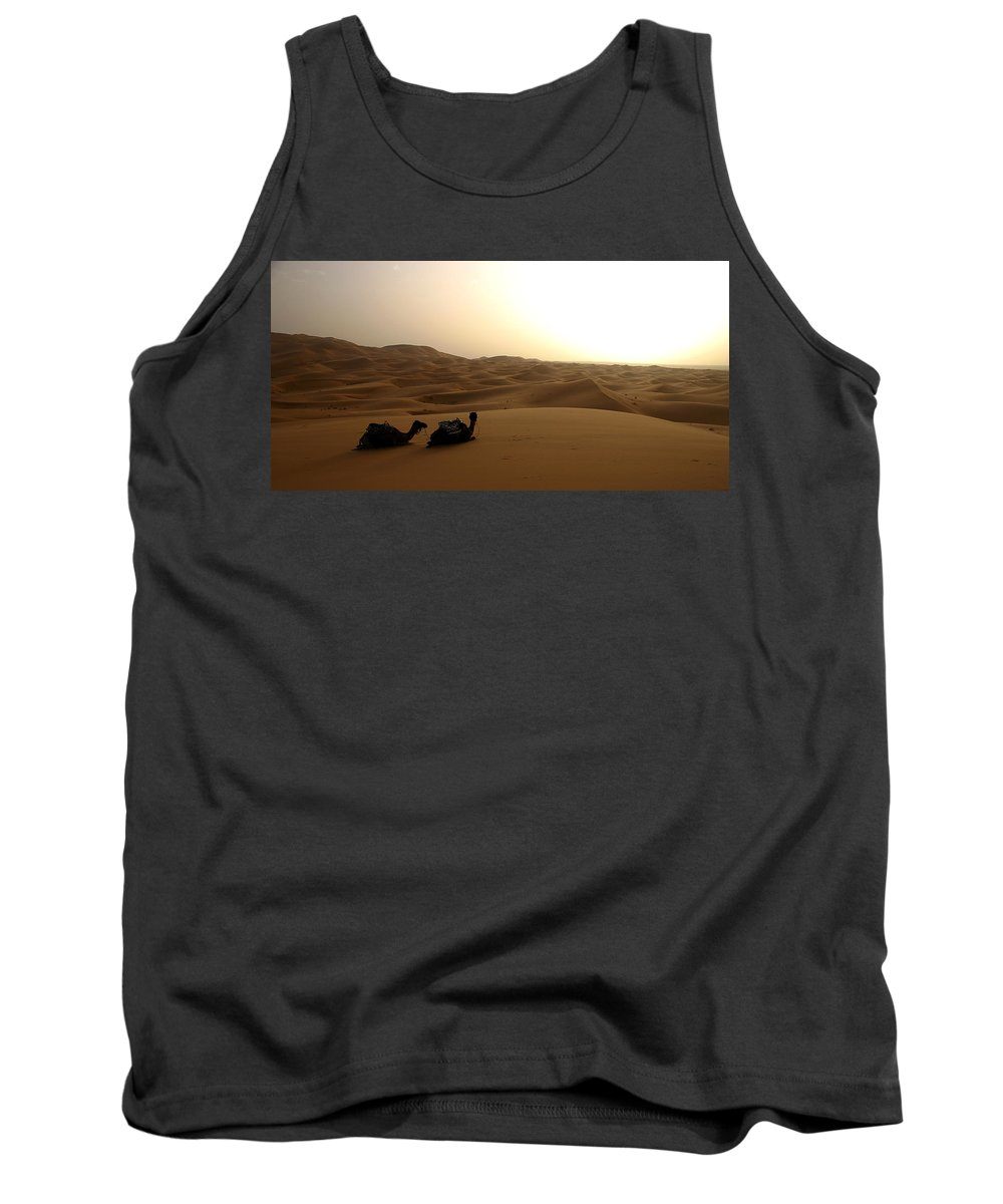 Camel Tank Top featuring the photograph Two Camels At Sunset In The Desert by Ralph A Ledergerber-Photography