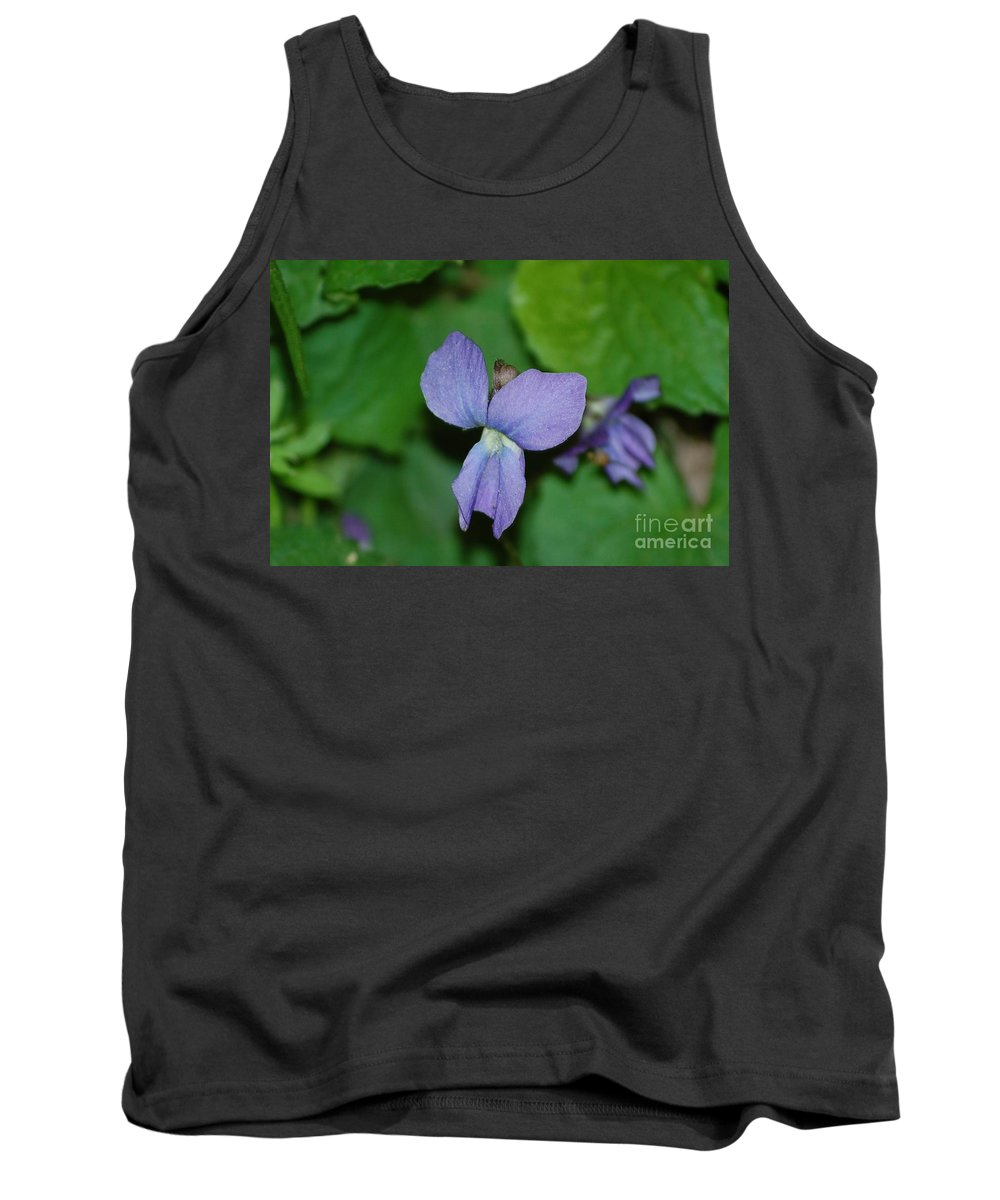 Landscape Tank Top featuring the photograph Violet by David Lane