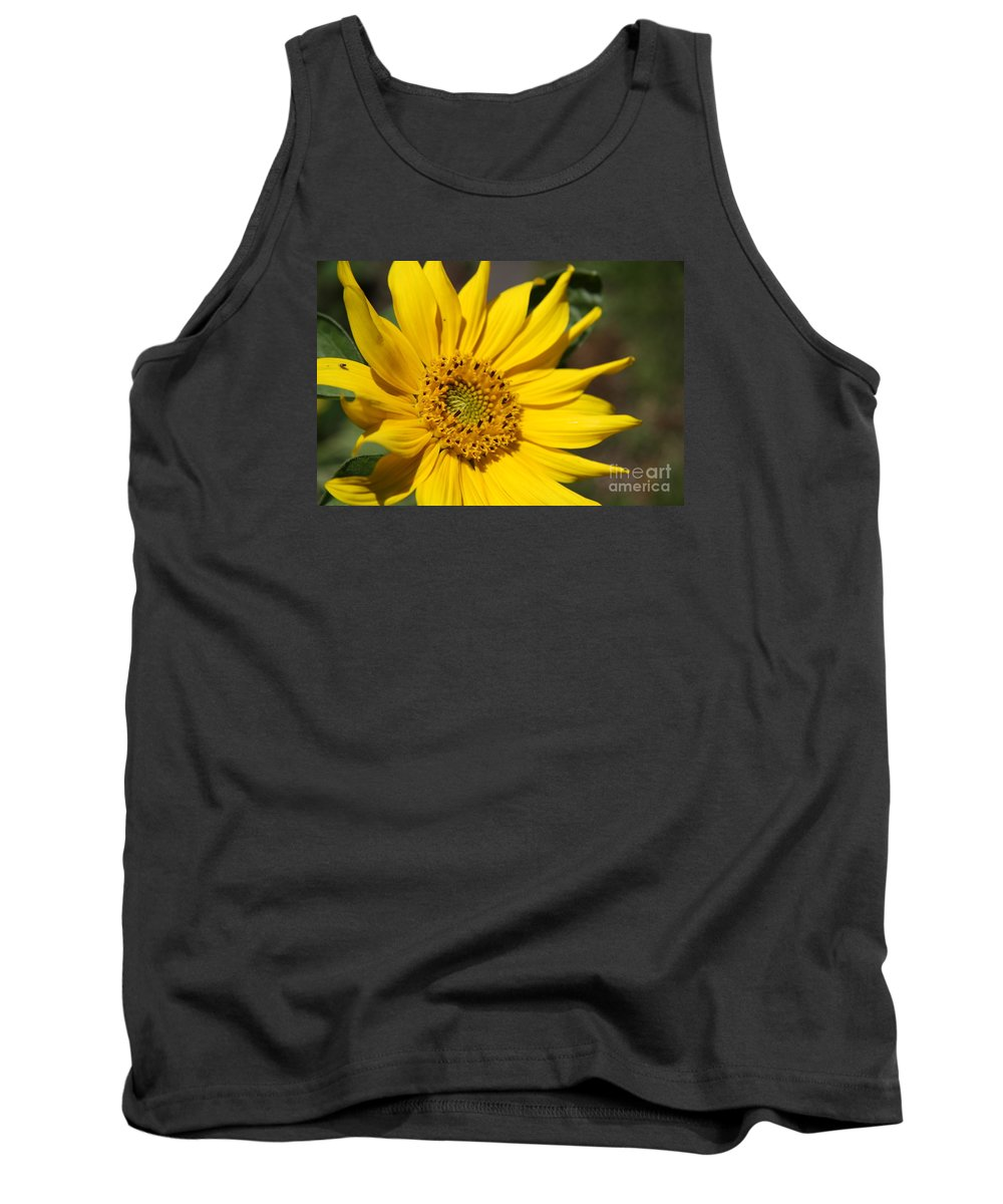 Sunflower Tank Top featuring the photograph Yellow Sunflower by Christiane Schulze Art And Photography