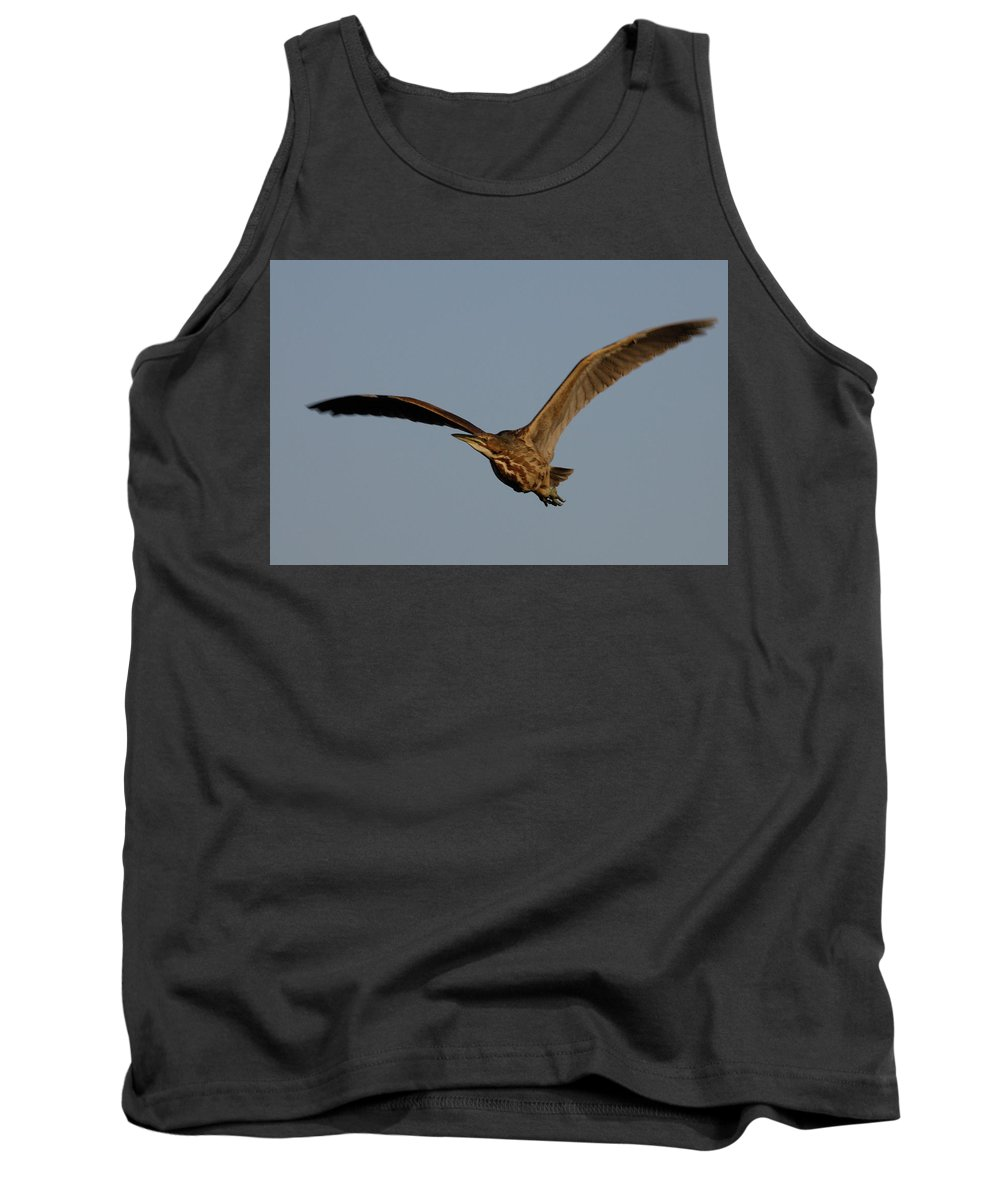 Waterfowl Tank Top featuring the photograph An American Bittern Comes Flying In. by Mark Wallner