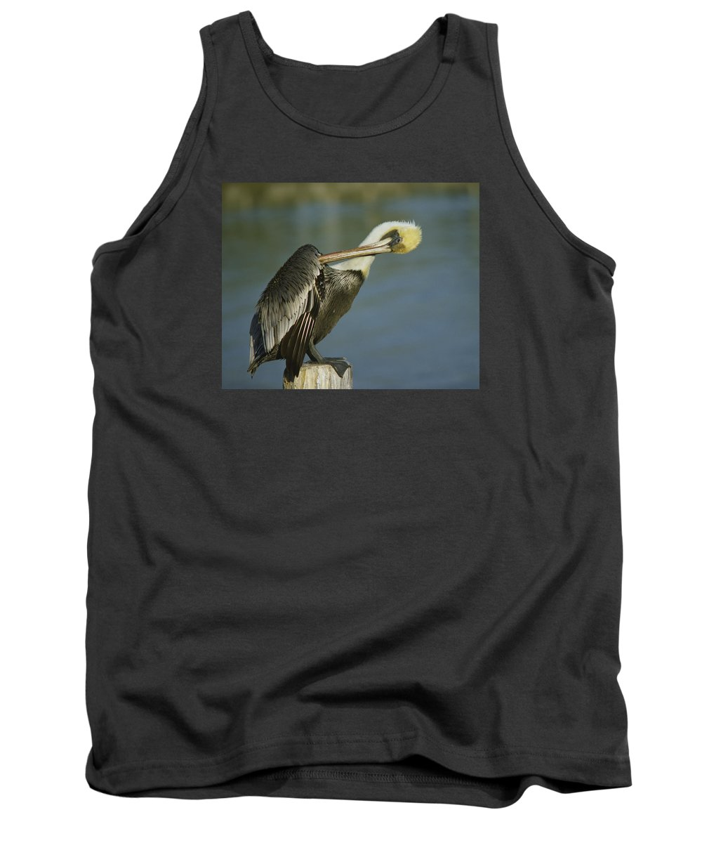 Native Tank Top featuring the photograph Brown Pelican At The Dock Of The Bay by Mark Wallner