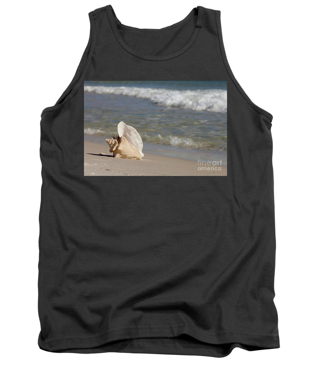 Queen Conch Tank Top featuring the photograph Queen Conch On The Beach by Anthony Totah