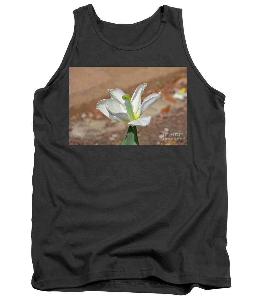 White Iris Tank Top featuring the photograph White Iris by Ruth Housley