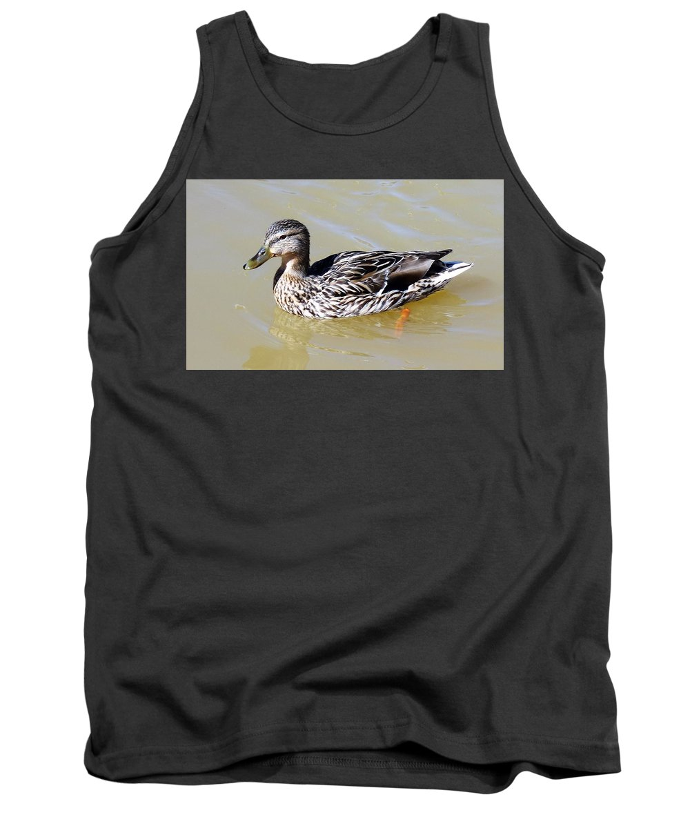 Duck Tank Top featuring the photograph Duck by Anthony Schafer