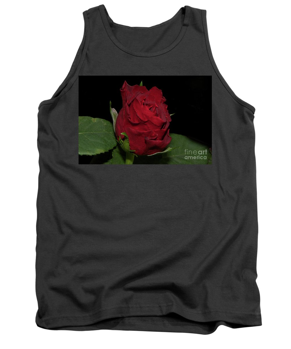 Flowers Tank Top featuring the photograph Red Rose by Elvira Ladocki
