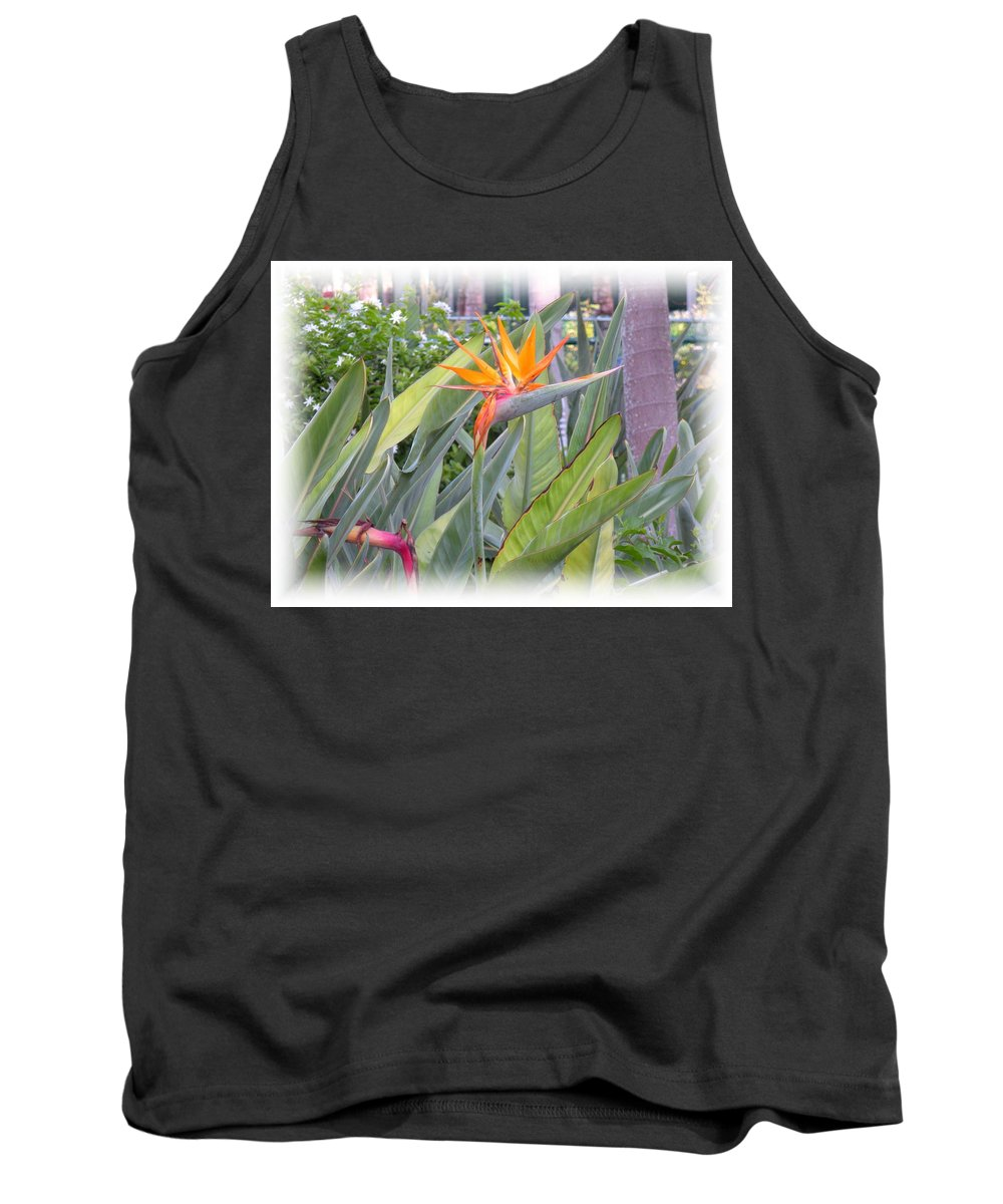 Plant Tank Top featuring the photograph A Bird In Paradise by Maria Bonnier-Perez