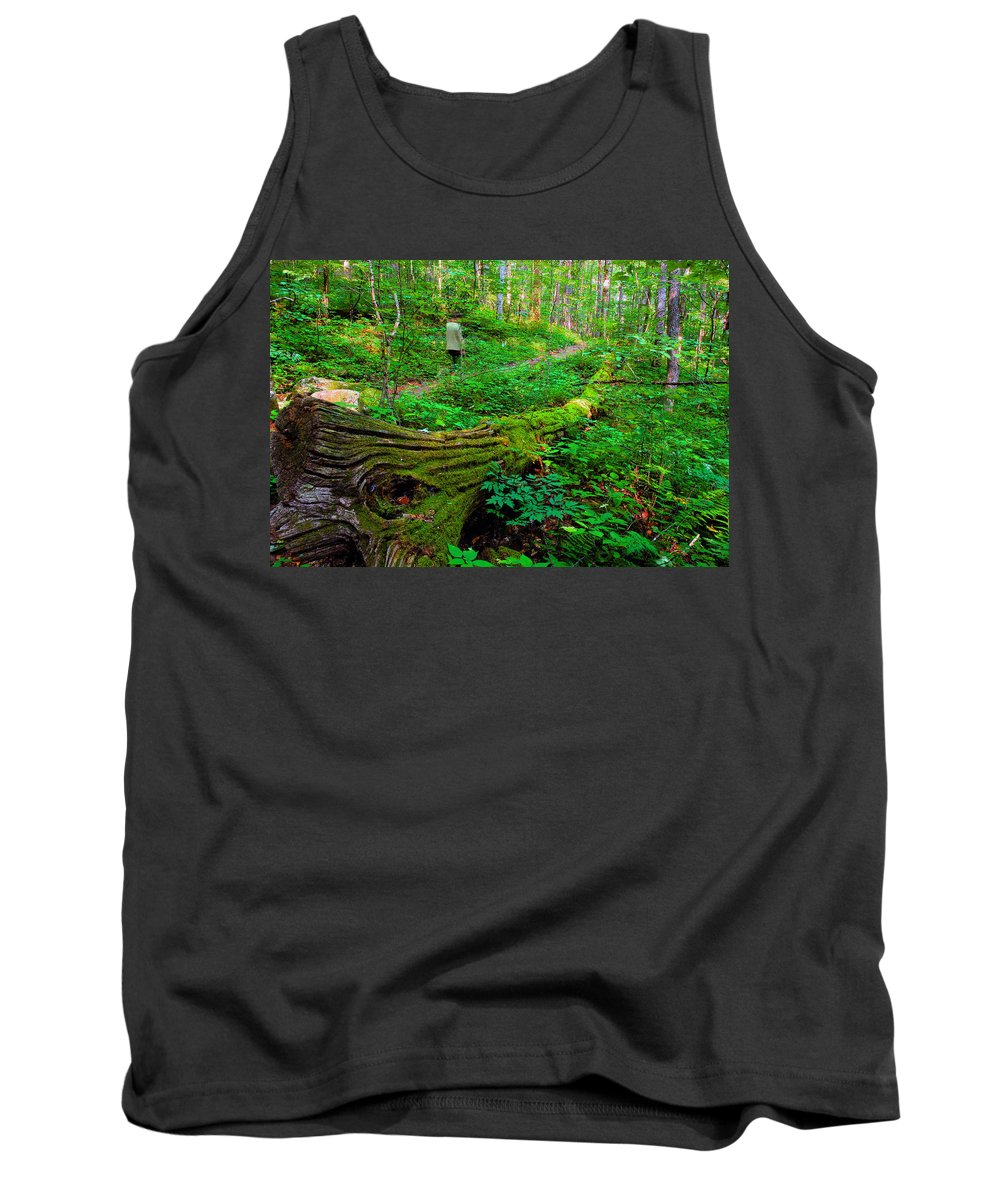 Hiking Tank Top featuring the painting A Forest Stroll by David Lee Thompson