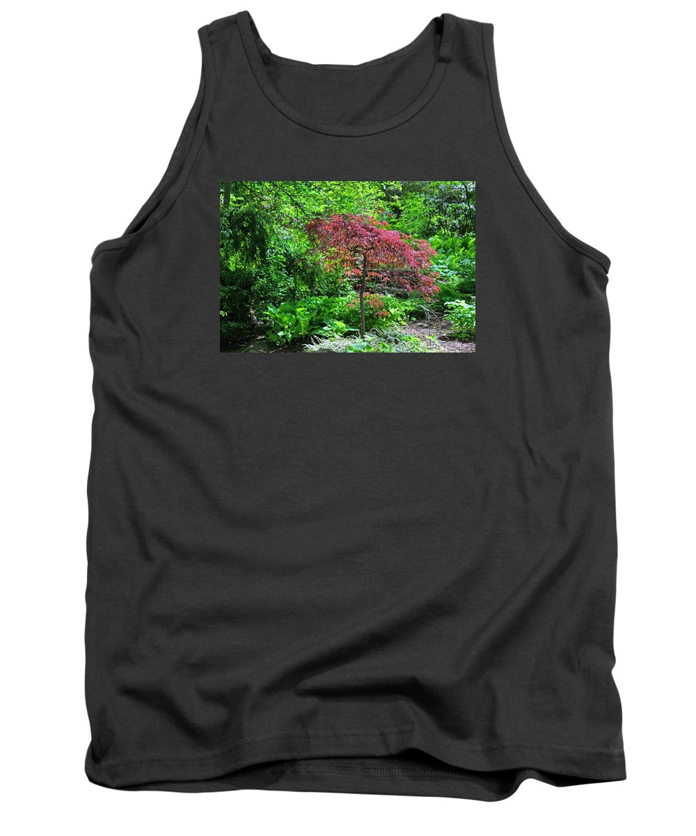 Spring Tank Top featuring the photograph A Kingdom Of Dreams by Michiale Schneider