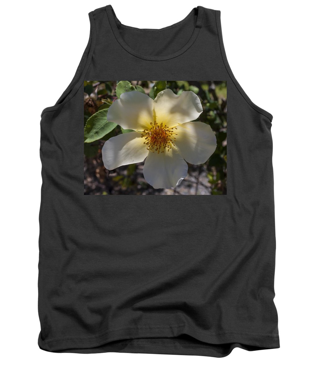 Flower Tank Top featuring the photograph A Simple Rose by Bruce Frye