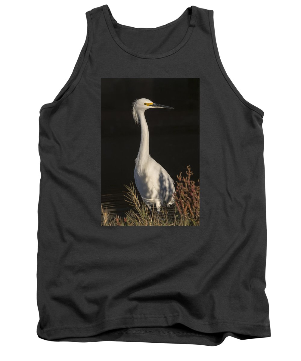 Egret Tank Top featuring the photograph A Snowy Egret Portrait by Bruce Frye