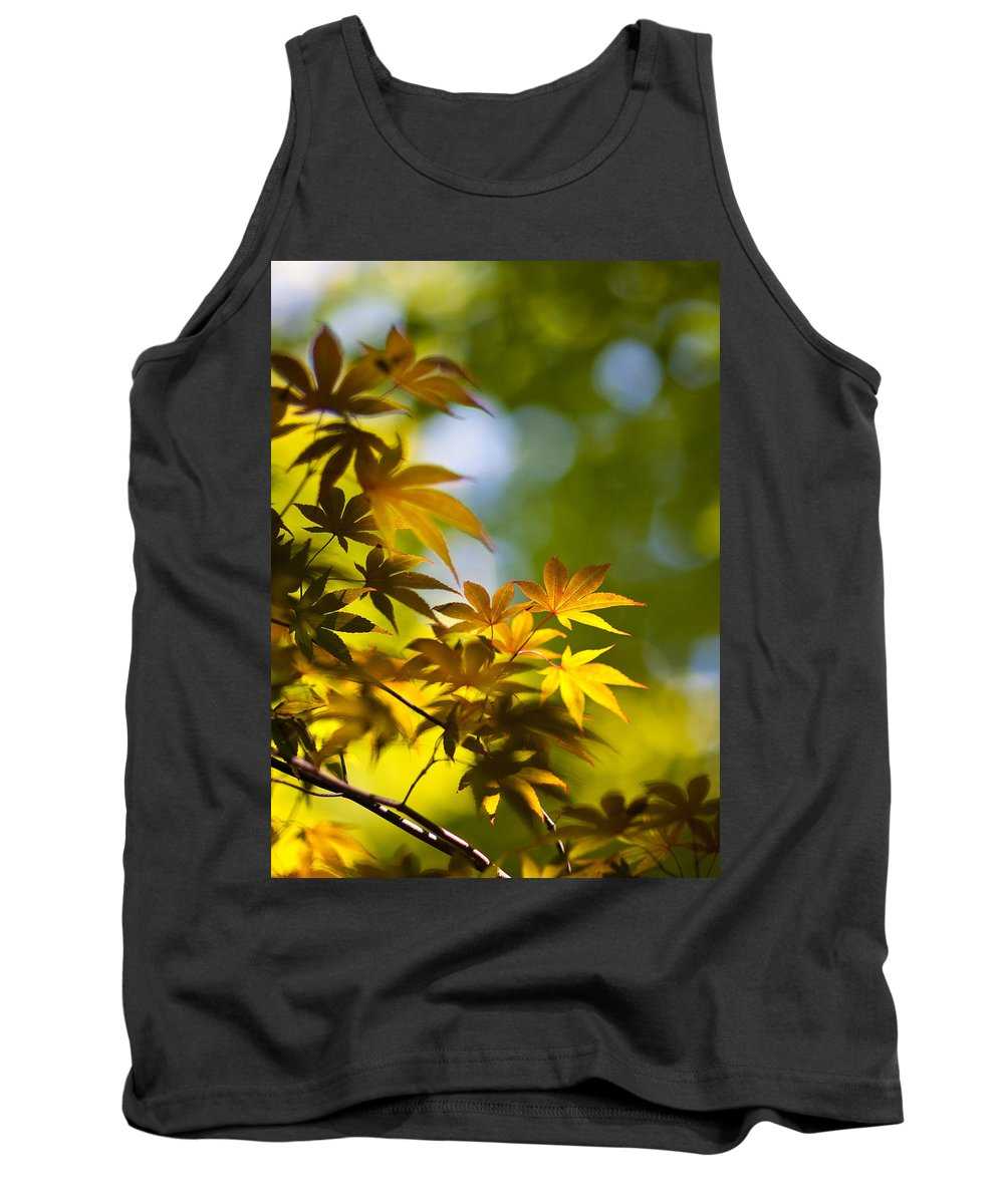 Japanese Maples Tank Top featuring the photograph Acer Glow by Mike Reid