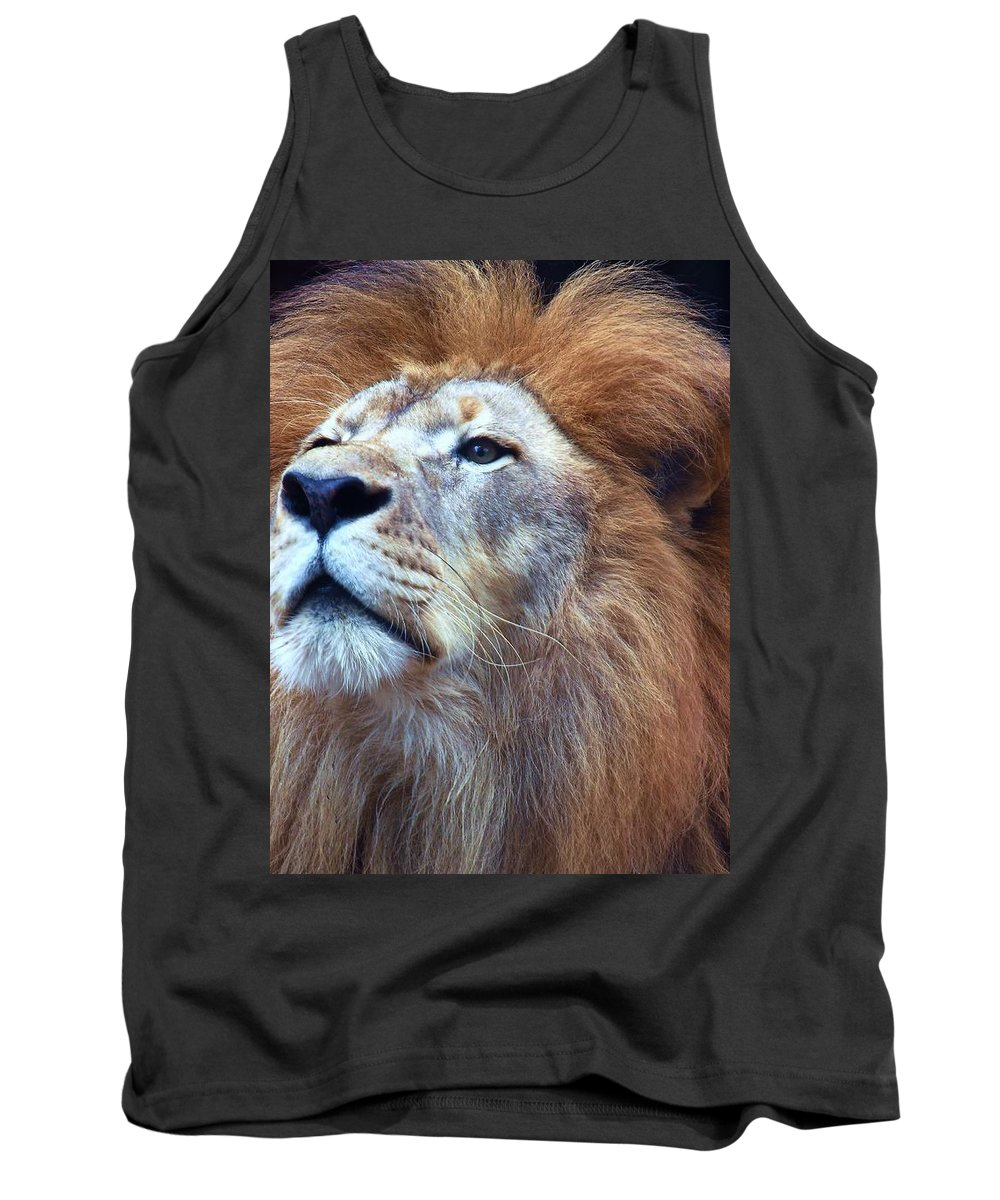 Wildlife Tank Top featuring the photograph African Lion by Randy Matthews