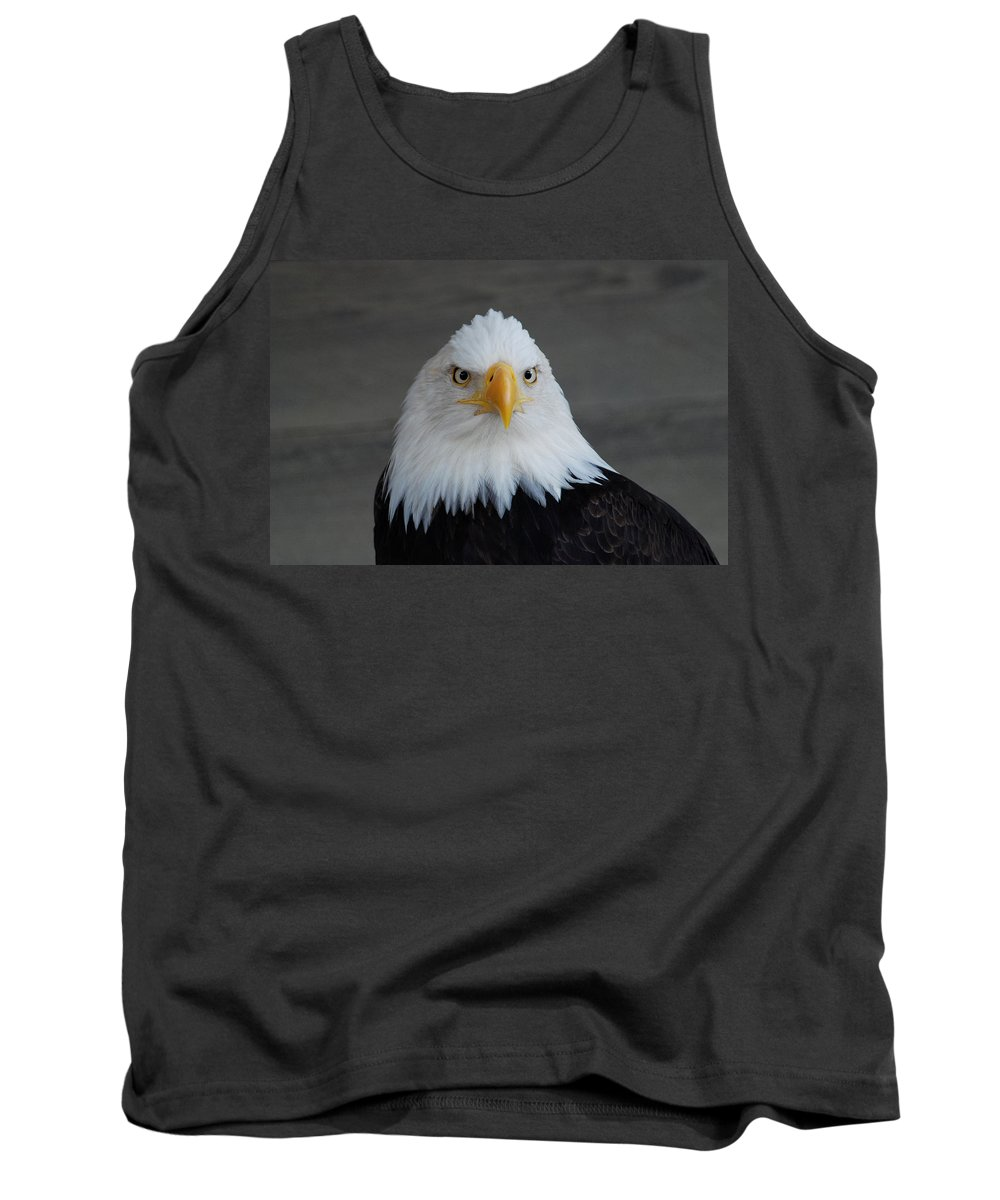 Bald Eagle Tank Top featuring the photograph Bald Eagle Ketchikan Alaska by Photography By Bruce