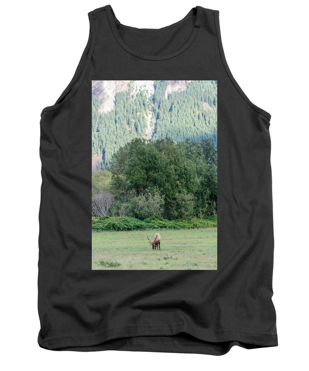 Elk Tank Top featuring the digital art All Alone by Verilux Photography