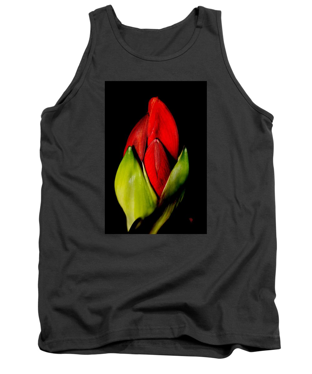 Flower Tank Top featuring the photograph Amaryllis by Darcy Dietrich