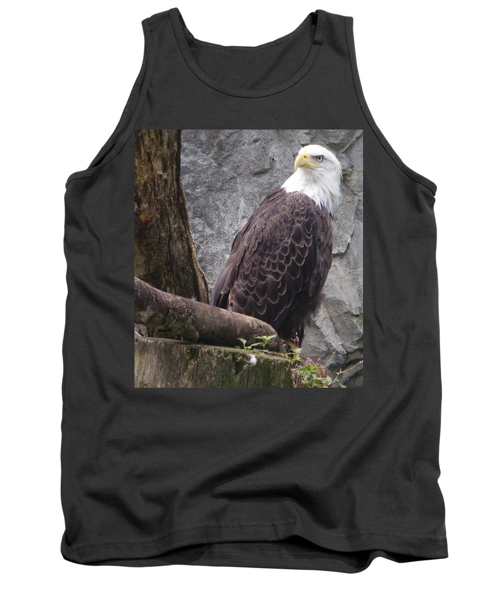 Eagle Tank Top featuring the photograph American Bald Eagle by Steven Natanson