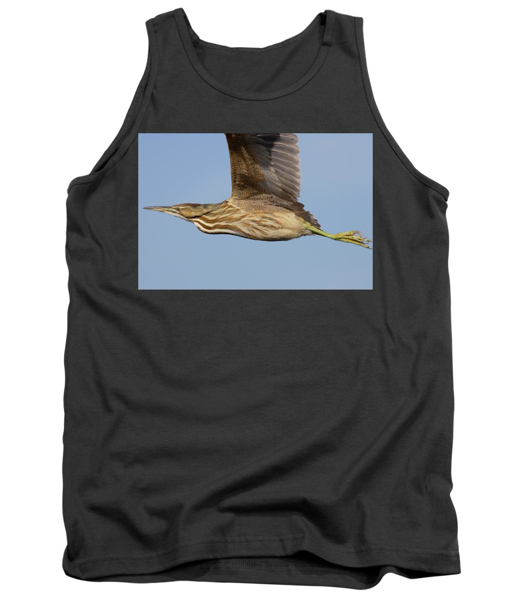 Native Tank Top featuring the photograph American Bittern Flies By by Mark Wallner