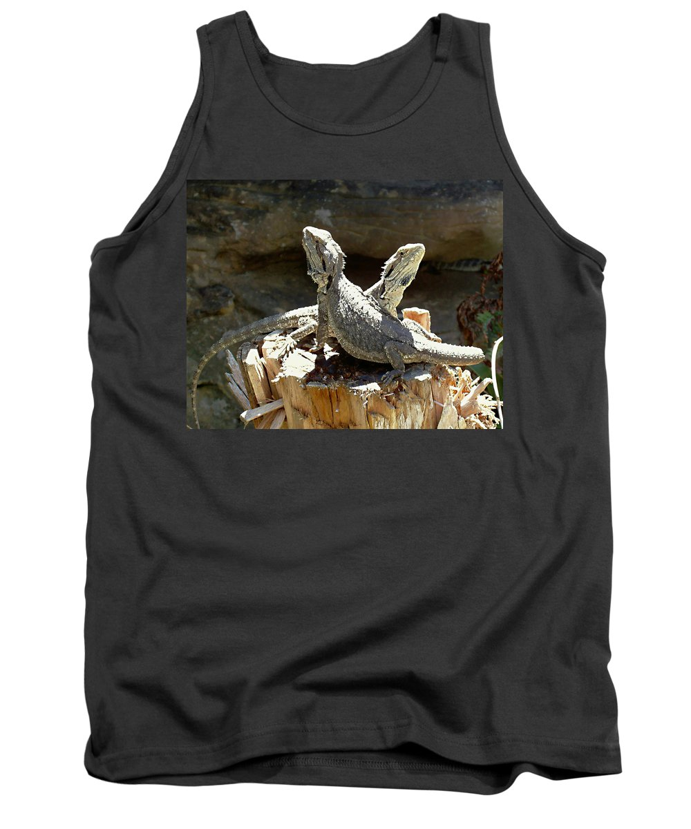 Amphion And Zethus Tank Top featuring the photograph Amphion And Zethus by Ellen Henneke