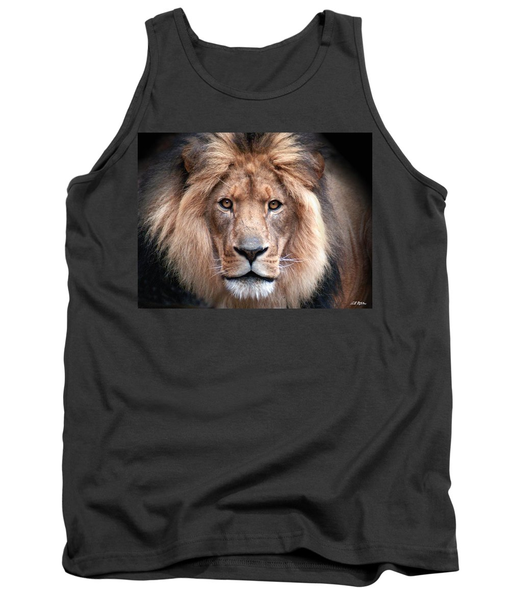 Lion Tank Top featuring the photograph Angry by Bill Stephens