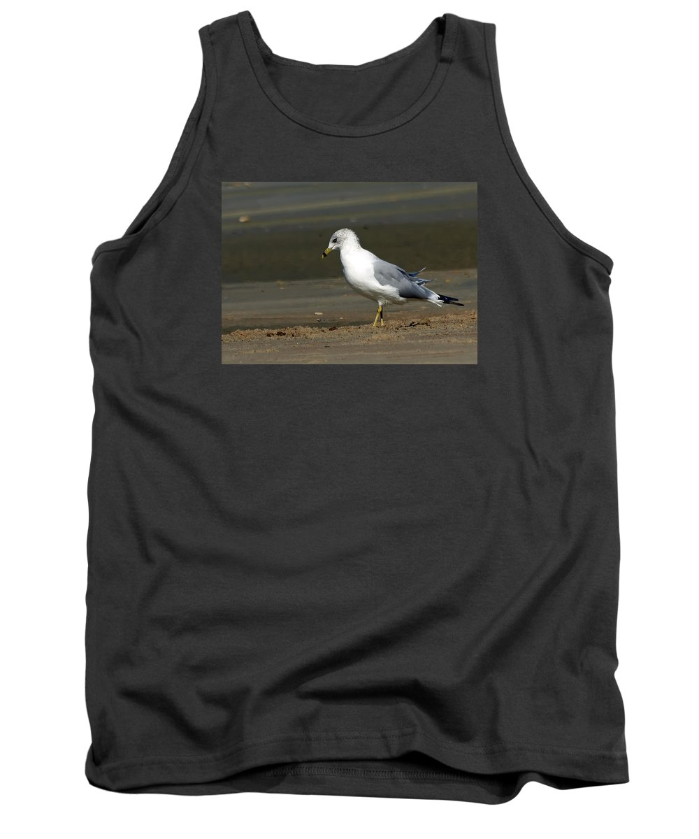 Ann Keisling Tank Top featuring the photograph Another Day At The Beach by Ann Keisling