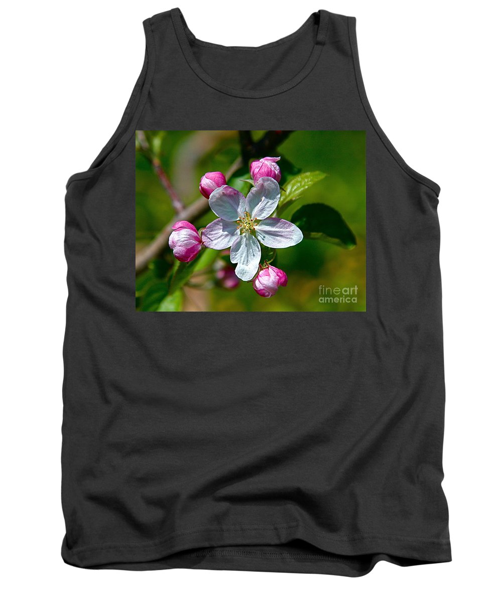Flower Tank Top featuring the photograph Apple Blossom by Robert Pearson