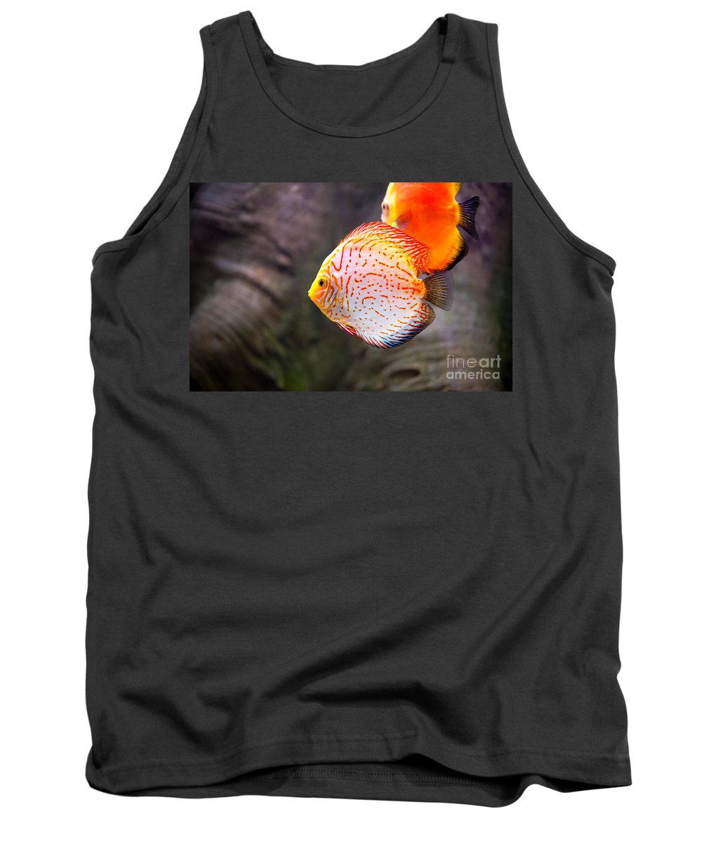 Symphysodon Tank Top featuring the photograph Aquarium Orange Spotted Fish by Arletta Cwalina