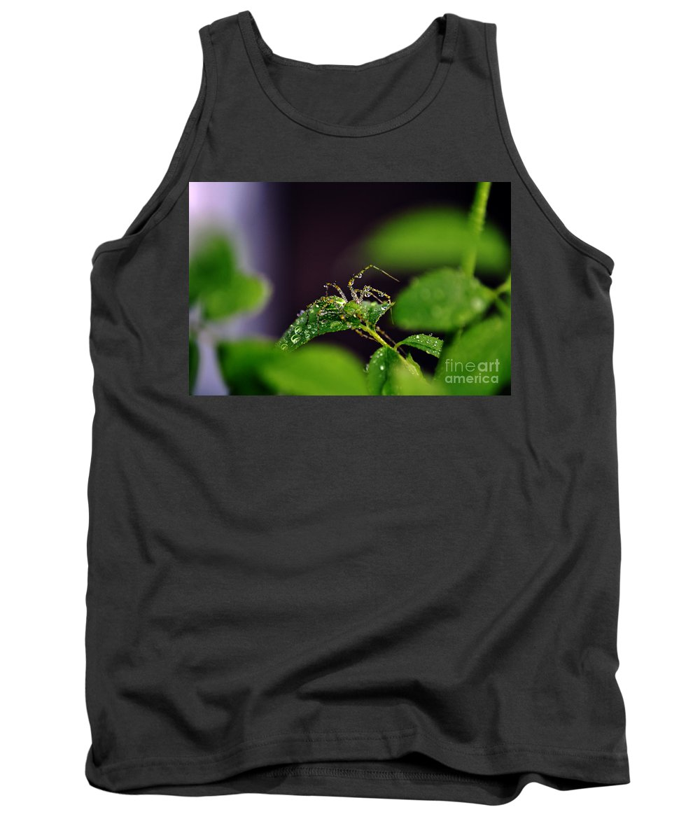 Clay Tank Top featuring the photograph Arachnishower by Clayton Bruster