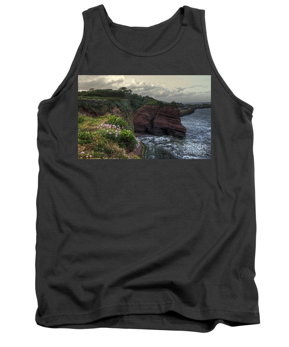 Langstone Tank Top featuring the photograph Around The Red Rock by Rob Hawkins