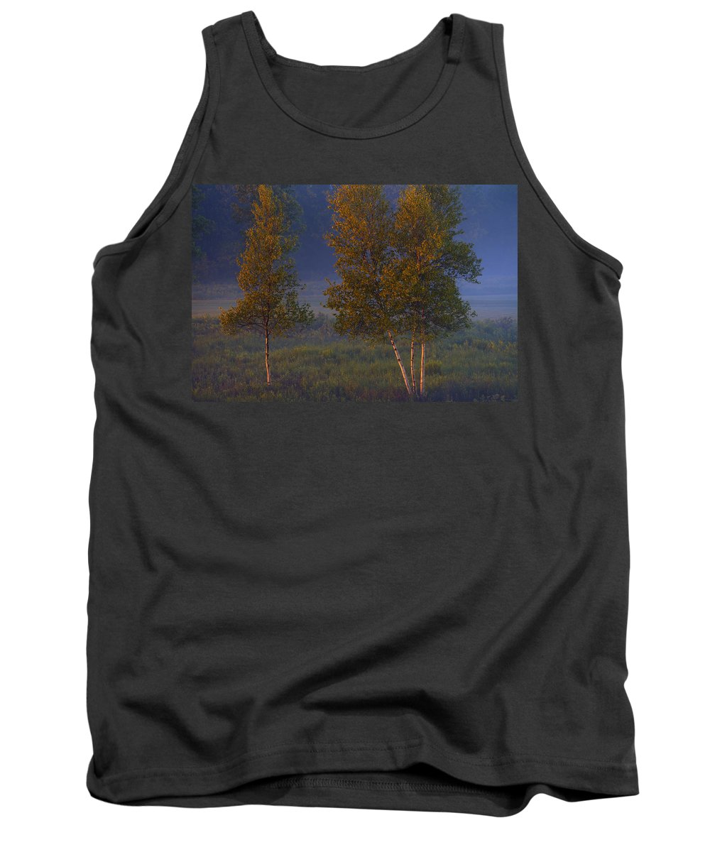 Evening Tank Top featuring the photograph Artificial Sunset by Irwin Barrett