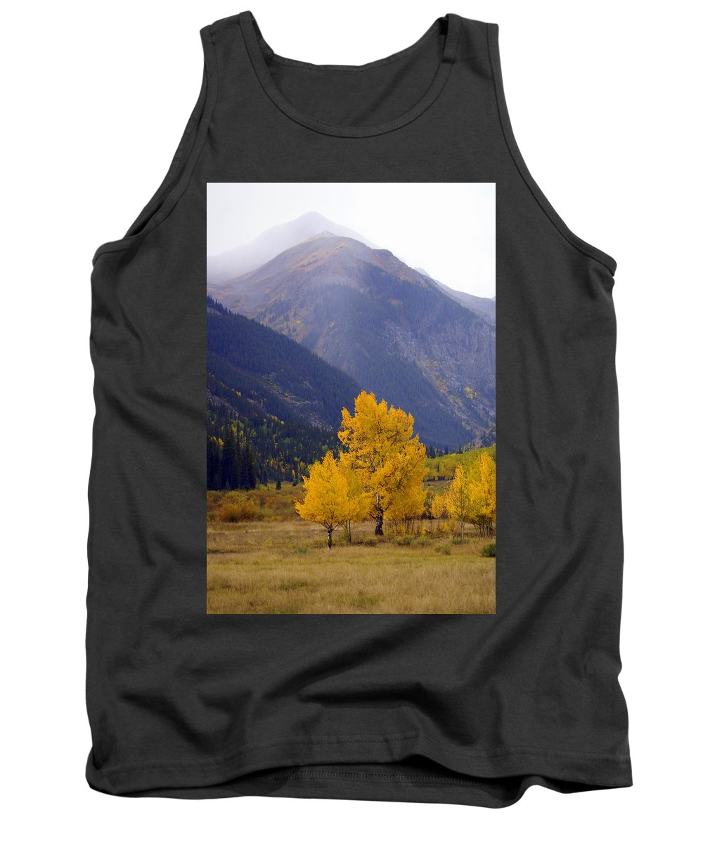Fall Colors Tank Top featuring the photograph Aspen Fall 4 by Marty Koch