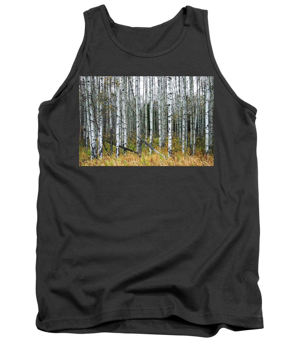 Aspens Tank Top featuring the photograph Aspens by Nelson Strong