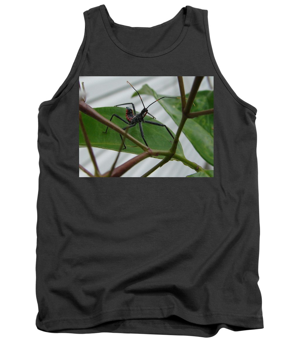 Insect Red Black Green Leaf Tank Top featuring the photograph Assassin Bug by Luciana Seymour