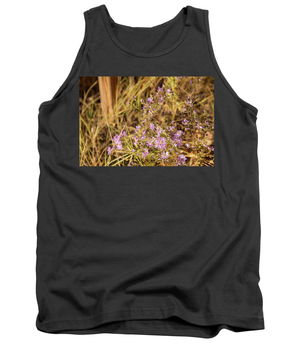 Aster Flowers Tank Top featuring the photograph Asters In Autumn by Kunal Mehra