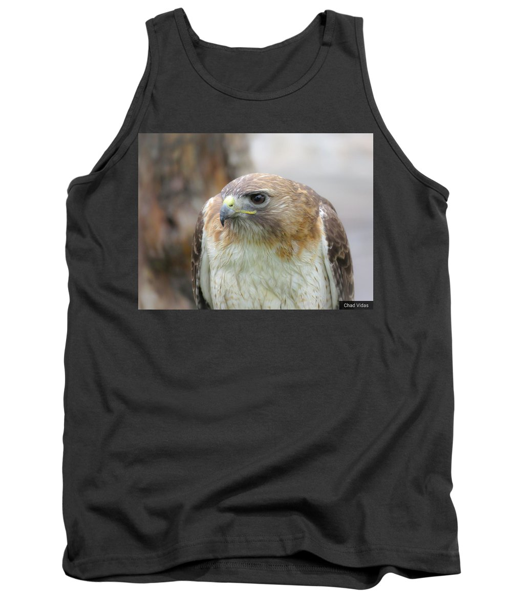 Red-tail Hawk Tank Top featuring the photograph Audubon Quality by Chad Vidas