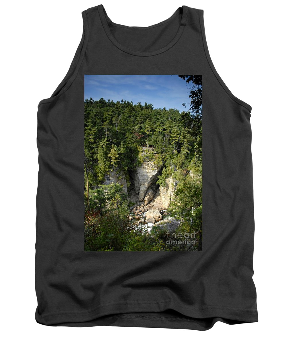 Ausable Chasm Tank Top featuring the photograph Ausable Chasm by David Lee Thompson