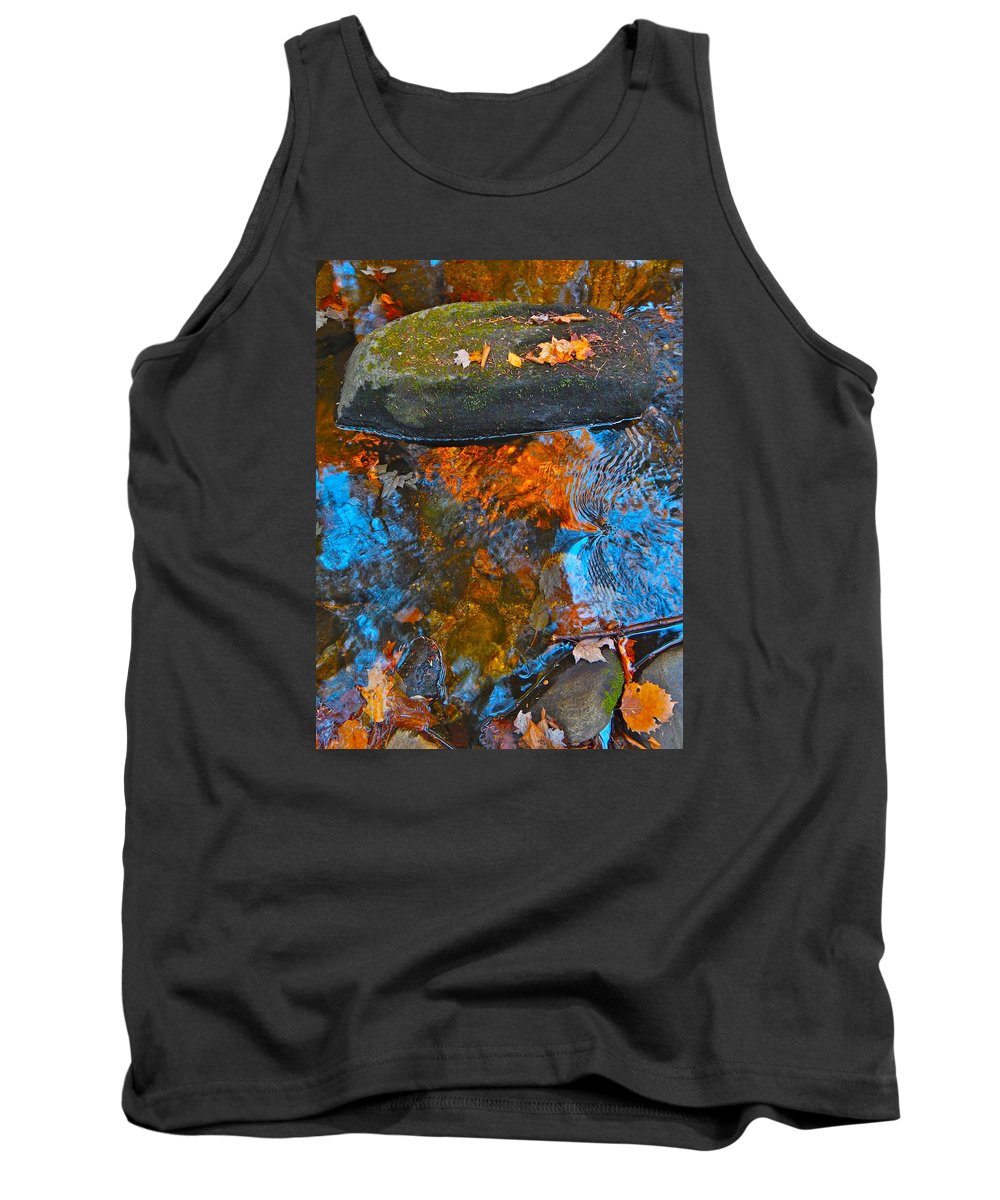 Autumn Landscape Tank Top featuring the photograph Autumn 2015 249 by George Ramos