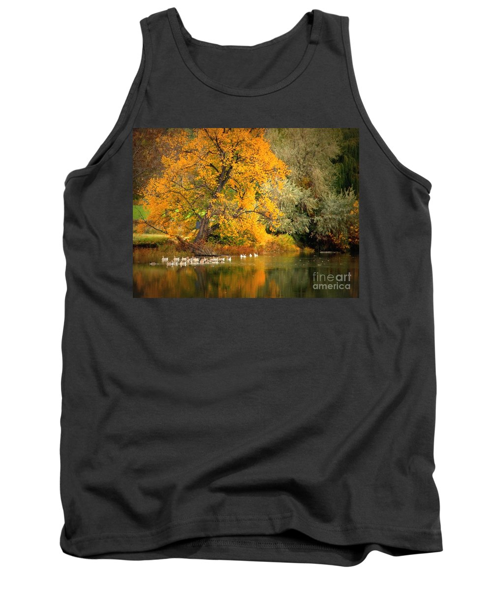 Fall Tank Top featuring the photograph Autumn Calm by Carol Groenen