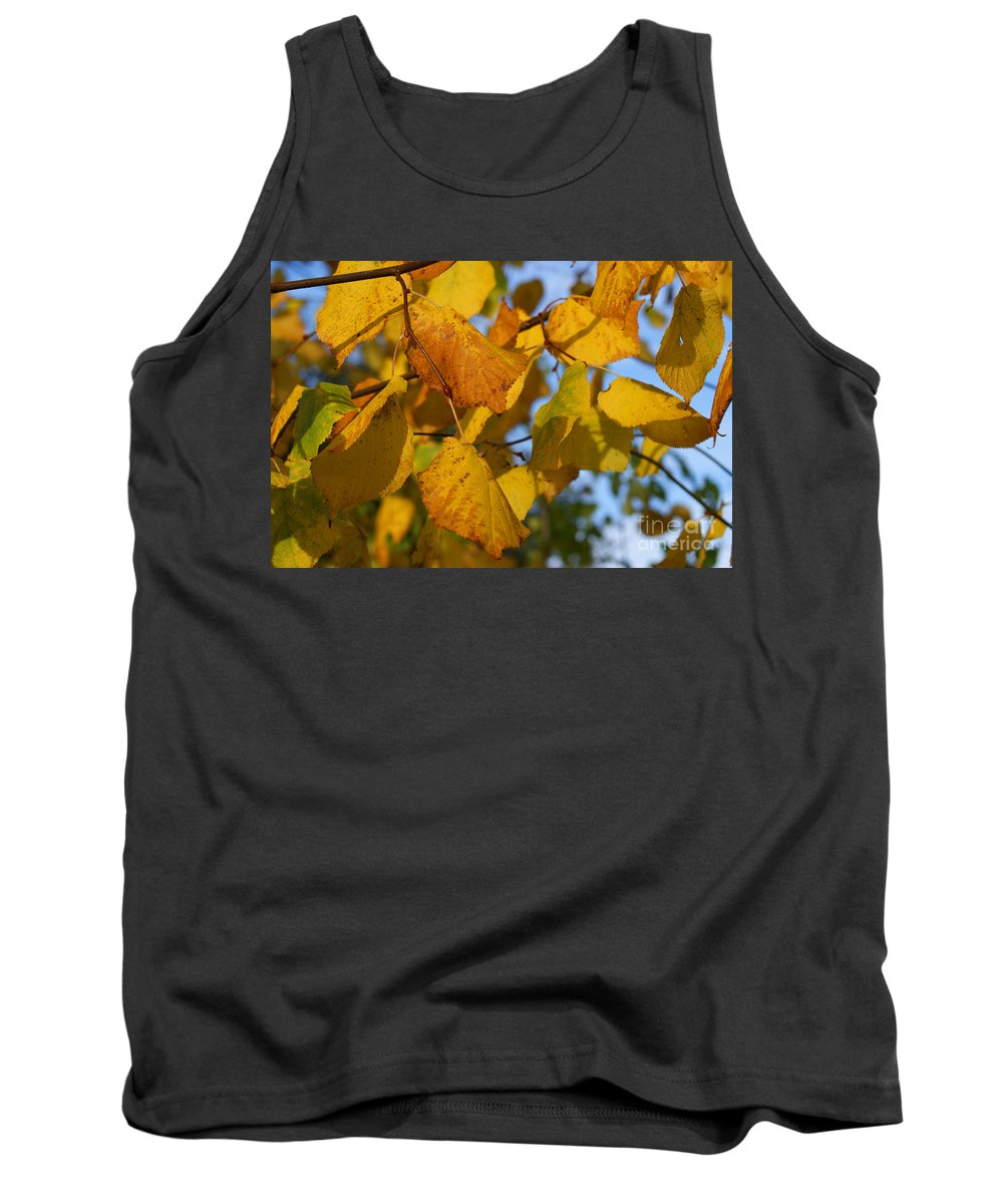 Autumn Tank Top featuring the photograph Autumn by Carol Lynch