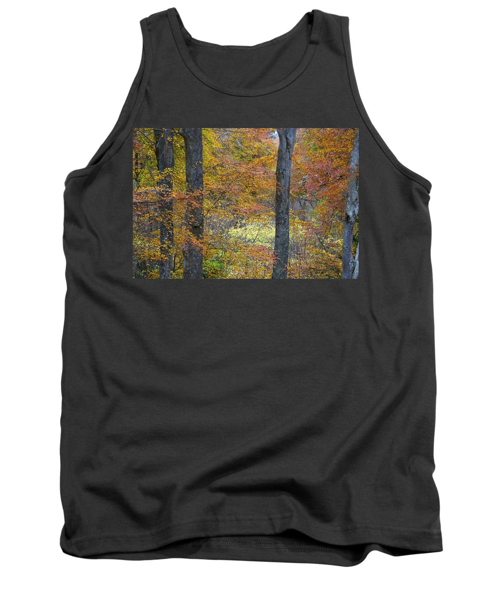 Fall Tank Top featuring the photograph Autumn Colours by Phil Crean