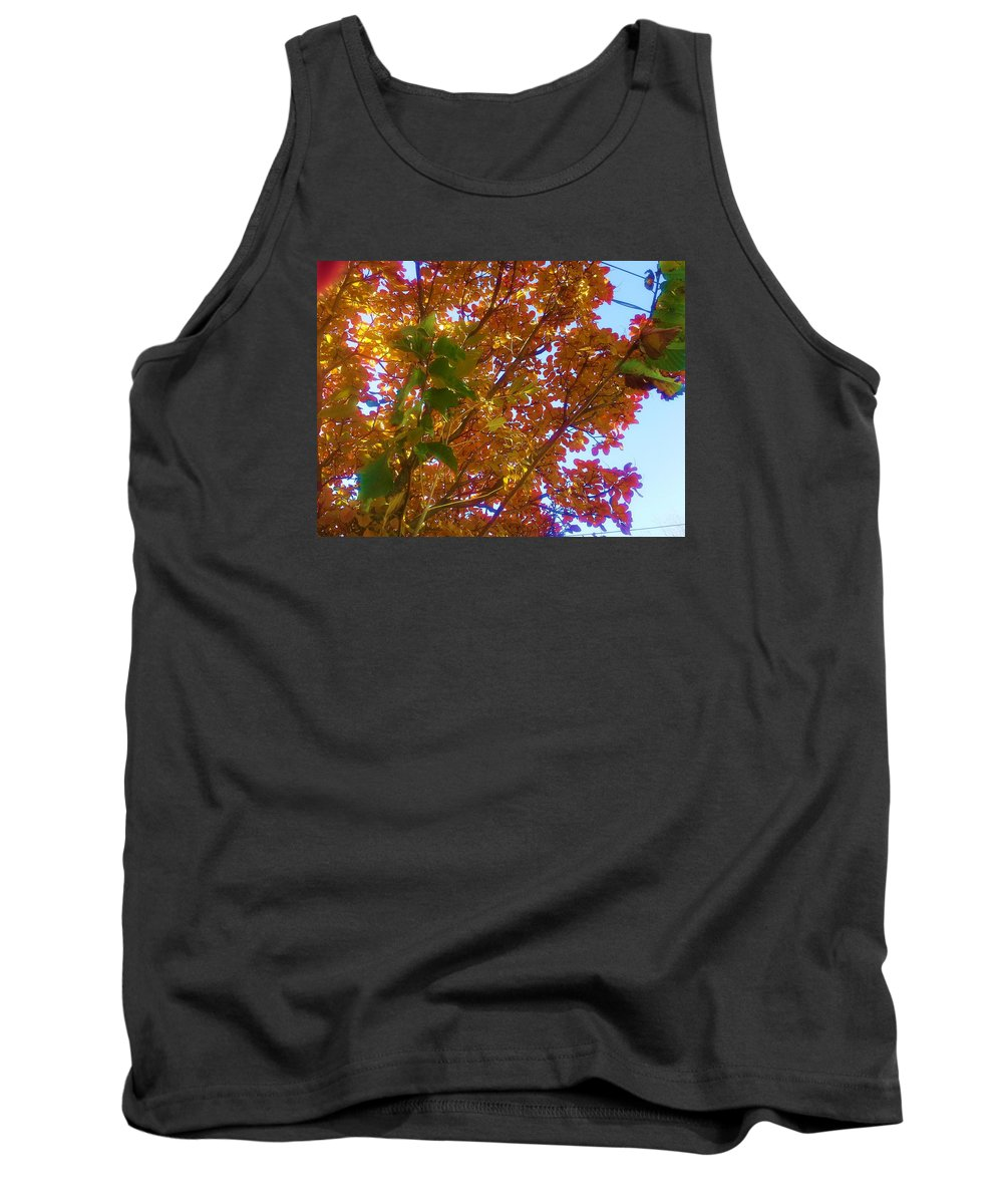 Autumn Tank Top featuring the photograph Autumn In The Canopy by Jo-Ann Hayden