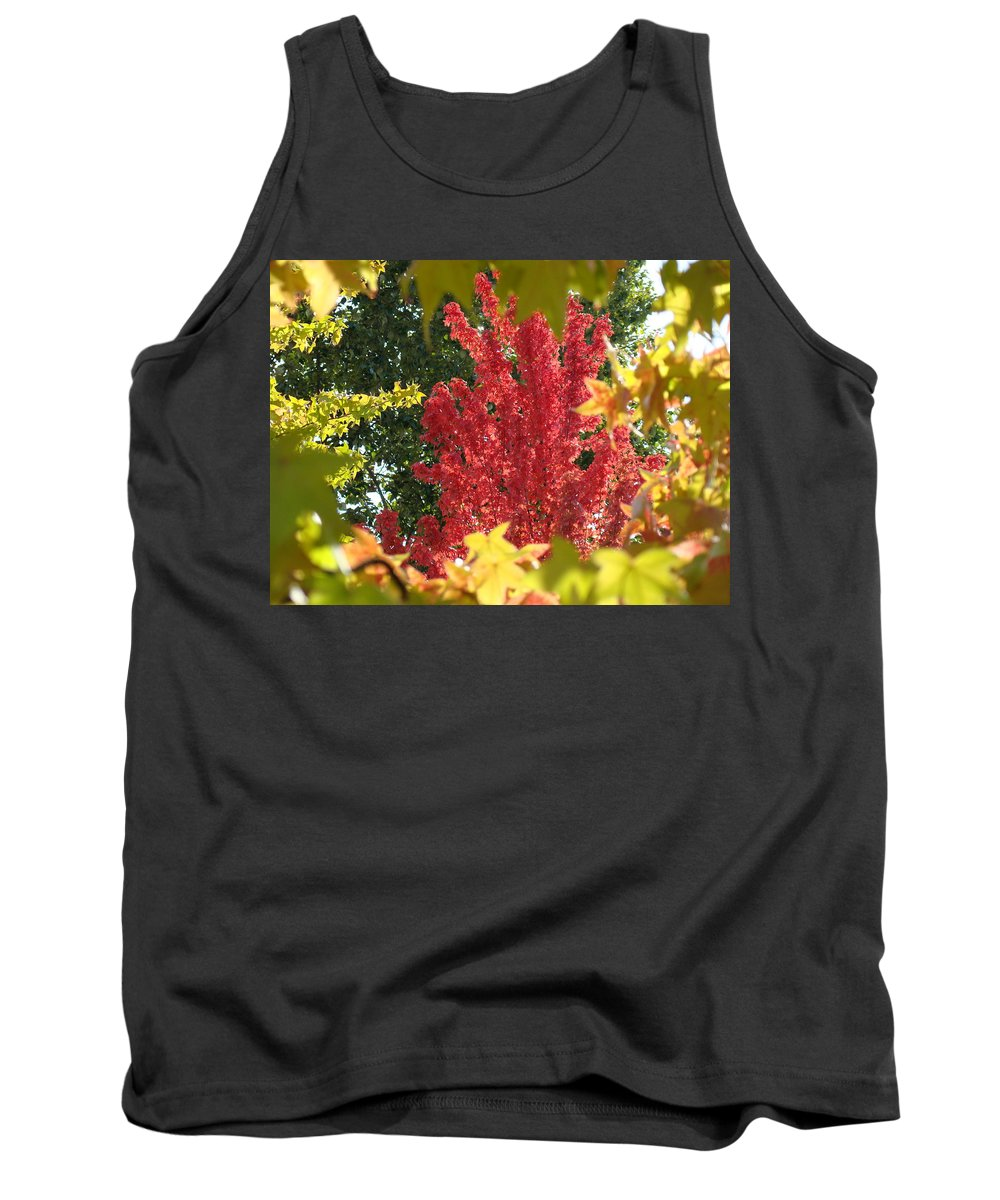 Autumn Tank Top featuring the photograph Autumn Trees Landscape Art Prints Canvas Fall Leaves Baslee Troutman by Baslee Troutman