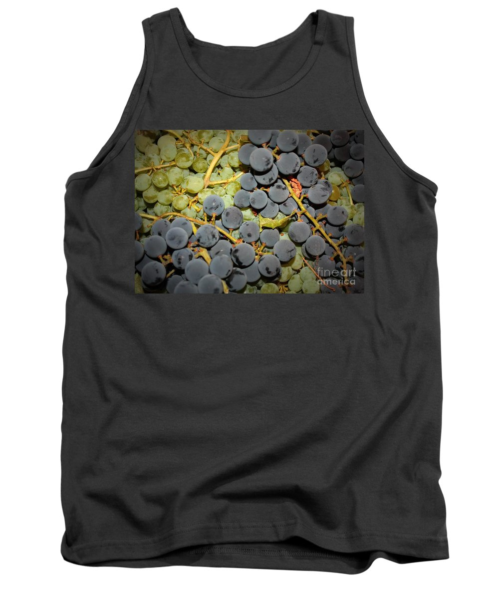 Grapes Tank Top featuring the photograph Backyard Garden Series - Grapes And Vines by Carol Groenen