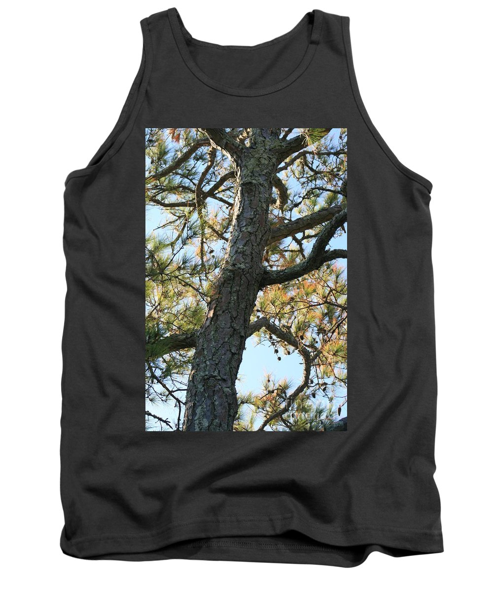 Tree Tank Top featuring the photograph Bald Head Tree by Nadine Rippelmeyer