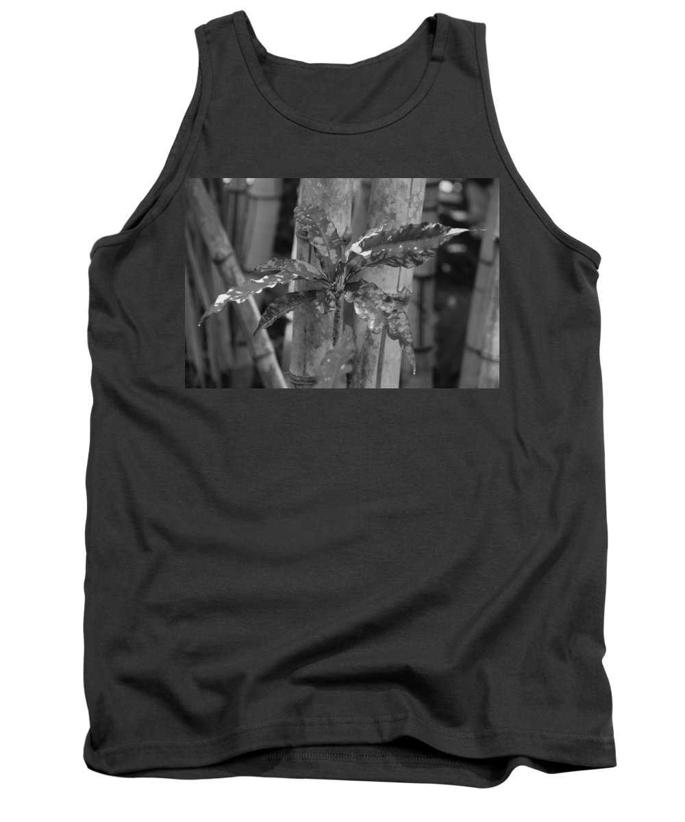 Macro Tank Top featuring the photograph Bamboo Flower by Rob Hans