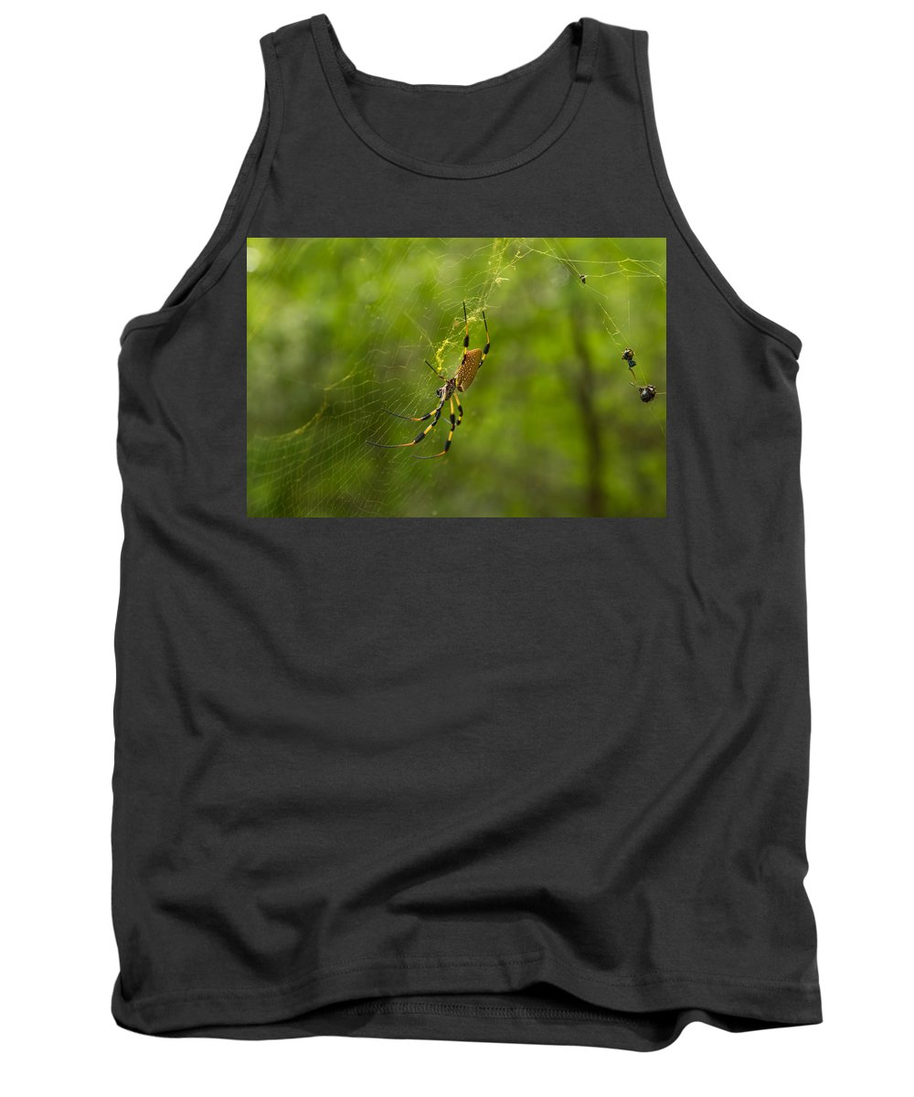 Spider Tank Top featuring the photograph Banana Spider by Christopher L Thomley