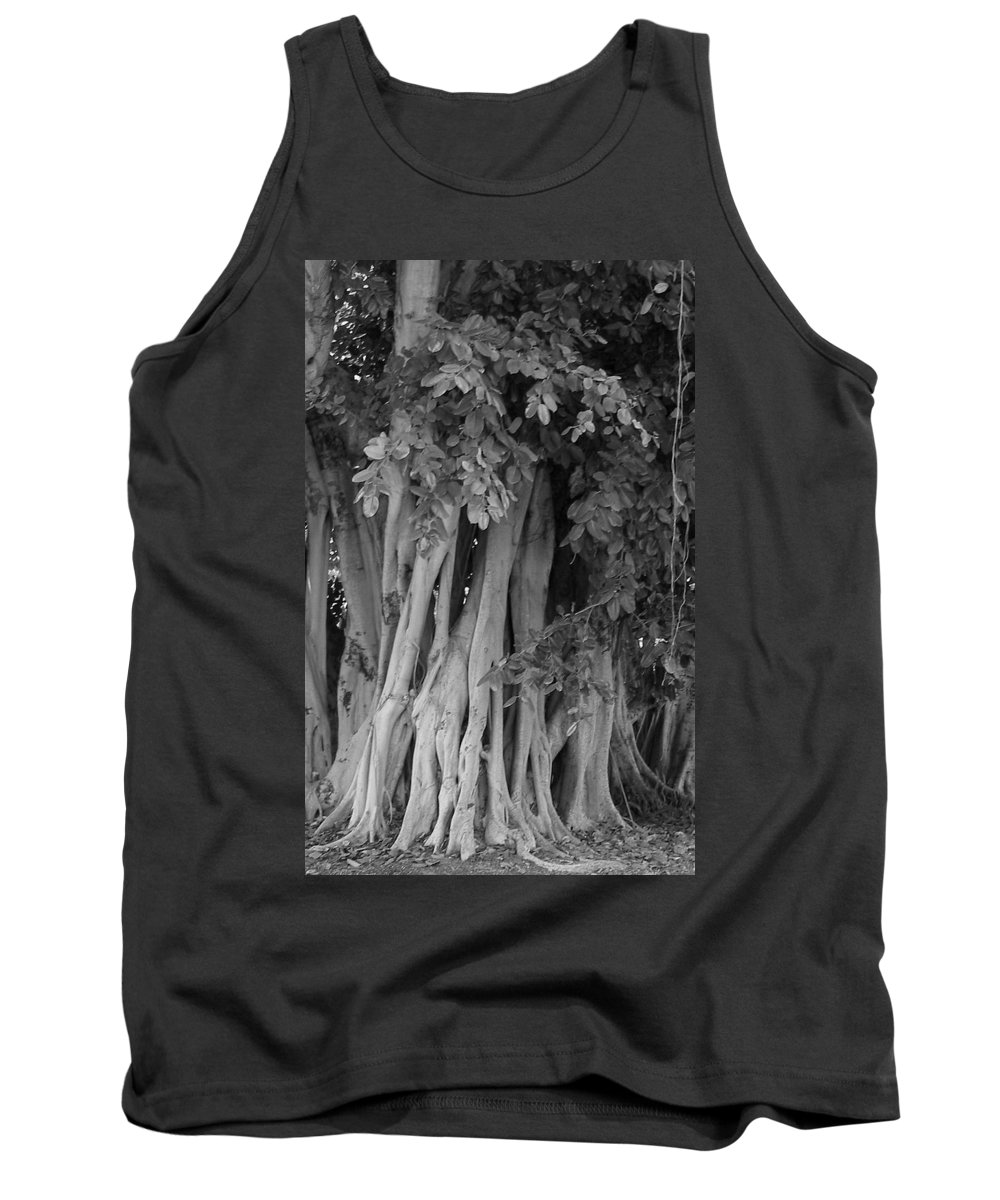 Tank Top featuring the photograph Banyans by Maria Bonnier-Perez