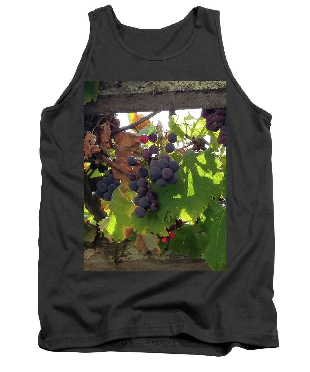 Grapes Tank Top featuring the photograph Barnyard Grapes by Rosanne Compitello